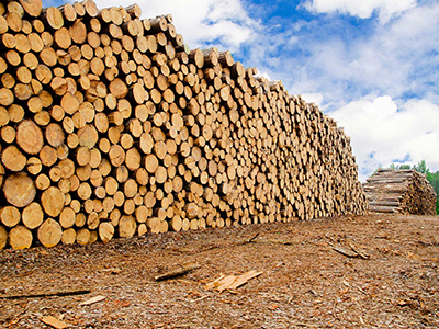 Softwood Lumber – Some Lessons from the Last Softwood (Lumber IV) Dispute
