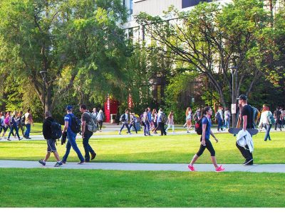 Stay the Course or Seize an Opportunity? Options for Alberta's Post-Secondary Institutions in a Period of Uncertainty About the Rebound of the Oil Economy